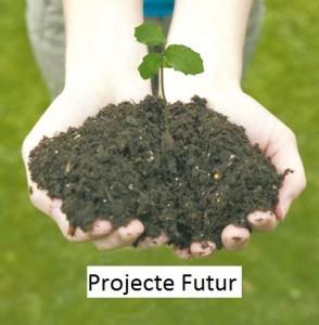 projecte futur